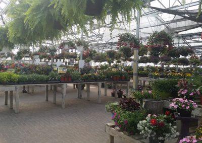 our garden center 10