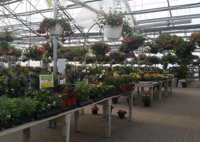 our garden center 12