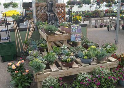 our garden center 14