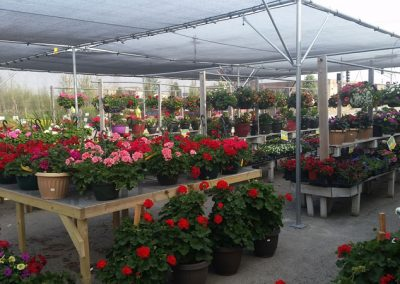 our garden center 16