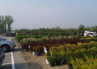 our garden center 18