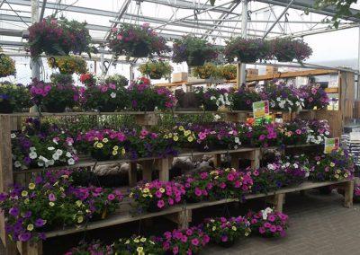 our garden center 2