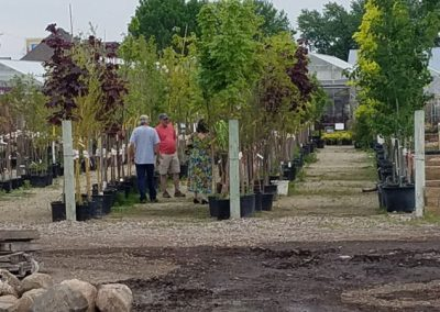 our garden center 20