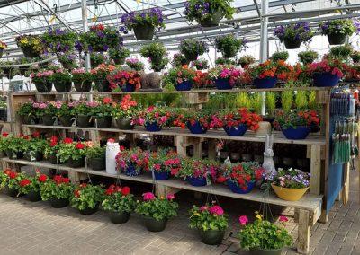 our garden center 3