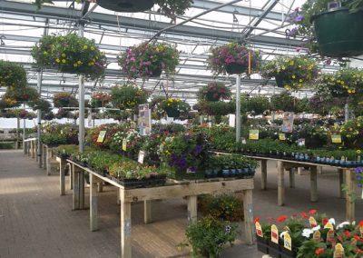 our garden center 7