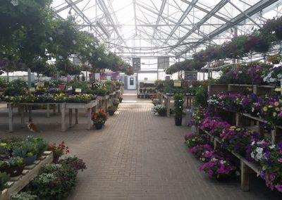our garden center 8