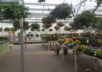 our garden center 9